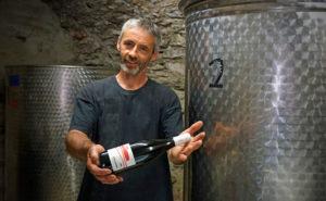 Clos Castell - Vins de Collioure