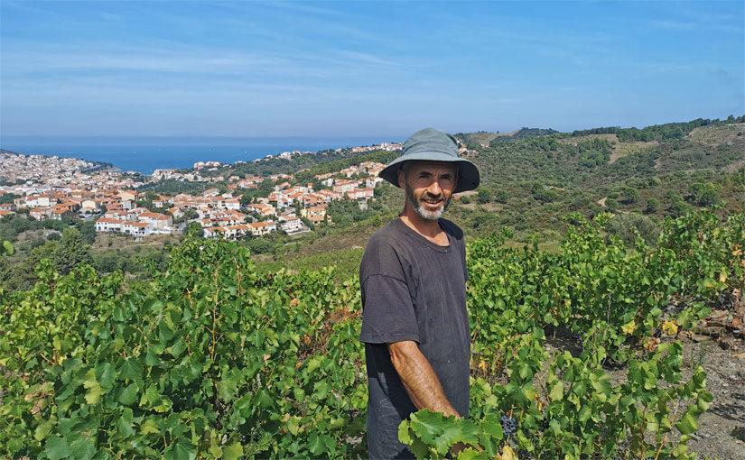 Jean Christophe Jose - Clos Castell - Vins de Collioure et de Banyuls
